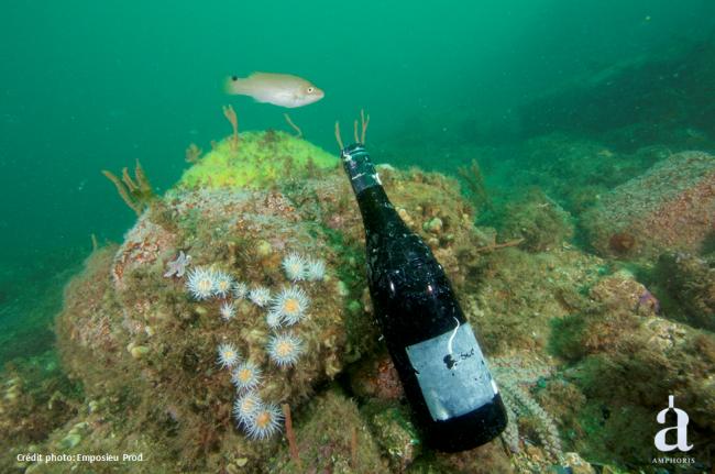 Cuvée sous marine Vinolok_SOVEX Grands Châteaux